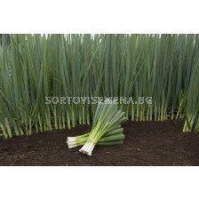 Семена за лук за зелено ПЕРФОРМЪР (Performer) BJ