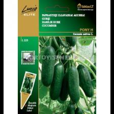 Краставици Пони (PONY) Хибрид-10 бр. семена