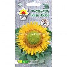 Декоративен слънчоглед (джудже) Green Hobbit