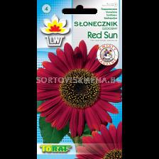 Декоративен слънчоглед - Red Sun