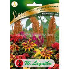 Амарантус / Amaranthus Magic Cascade / LG 1 оп