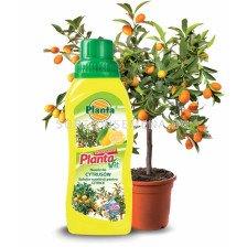 Течен тор за цитруси Planta