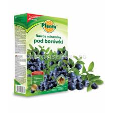 Тор за боровинки Planta