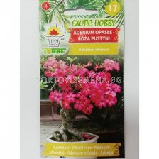 Пустинна роза /Adenium obesum/TF-1 оп