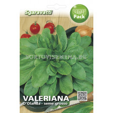 Валериана (Valeriana) D'olanda a Seme Grosso SG