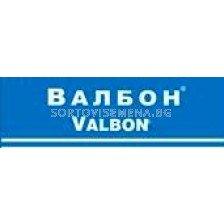 Валбон