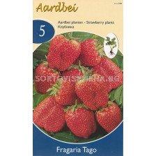 ягоди Tago