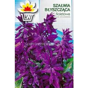 Салвия (Градински чай) - виолетова. Аграра ООД. Сортови семена Дар