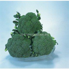 Броколи Сакура F1 - Broccoli Sakura F1