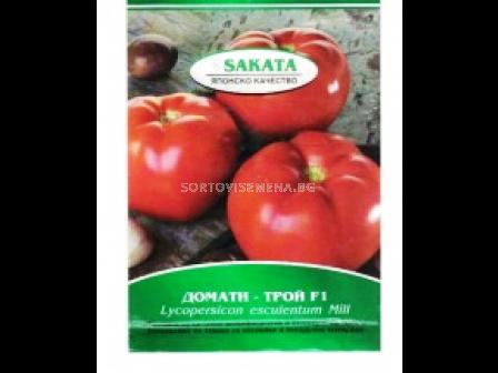 Семена Домати Трой F1 - tomato Troy F1