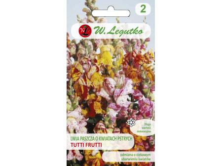 Семена Кученца ниски тути Фрути / Antirrhinum majus /LG 1 оп