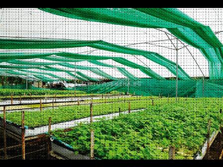 Плантина засенчваща мрежа 40% зелена   55 g/m2