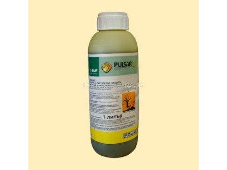 Пулсар 40