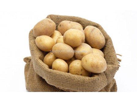 семе картофи Фолва - 5кг