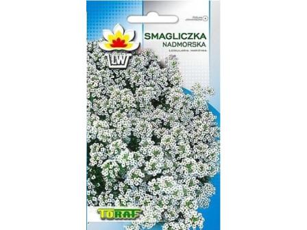 Семена Лобулария - бяла