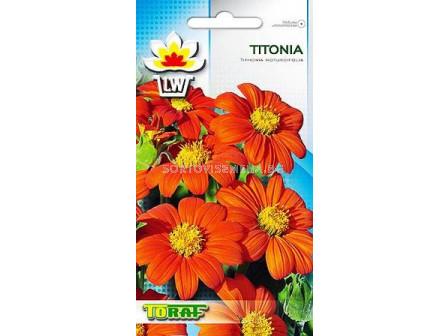 Семена Титониа - помпон