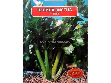 целина Листна - celery