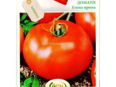 Семена Домати Елена F1 - Tomato Elena F1