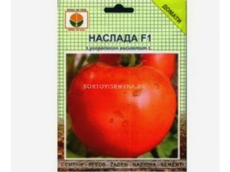 Семена Домати Наслада F1 - Tomato Naslada F1