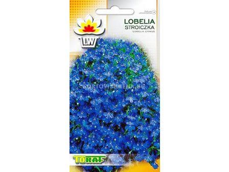 Лобелия - синя