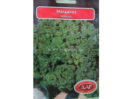 магданоз Къдрав - parsley curly