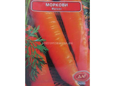 Сорт моркови Берликум. Аграра ООД. Сортови семена Варна