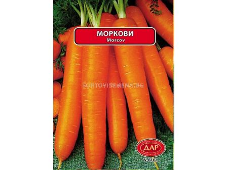 Сорт моркови Нантски. Аграра ООД. Сортови семена Варна