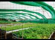 Плантина засенчваща мрежа 60% зелена 85 g/m2 - 2t
