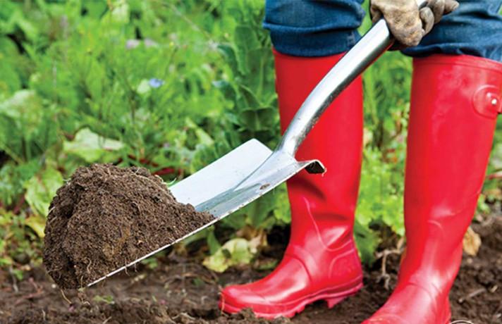 Изкопаване на дупка за засаждане на растения