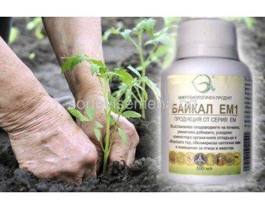 Байкал ЕМ1 – почвен пробиотик за здрави растения и по-богата реколта