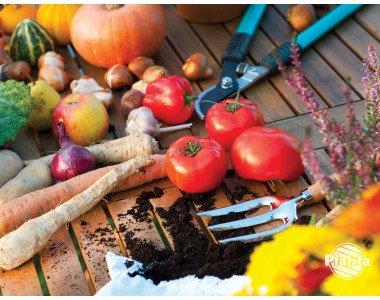 Биохумусът - ценен органичен тор