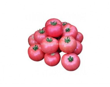 Семената на КИТАНО - нови технологии за чудесен резултат