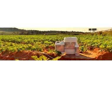 Биона – екологичен заместител на фунгициди и пестициди