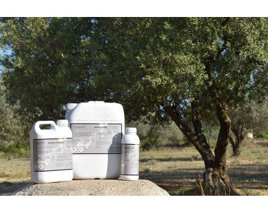 Предпазно и лечебно пръскане с биопродуктите на Биона