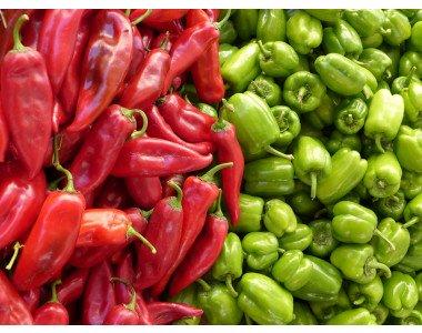 Професионални семена за пипер – качествена и богата реколта