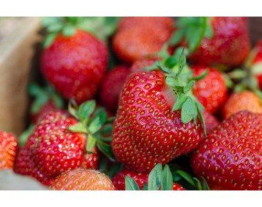 Ароматни и вкусни сортове ягоди от Аграра
